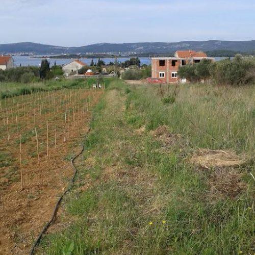 Građevinsko zemljište: 562 m2 Sv. Filip i Jakov