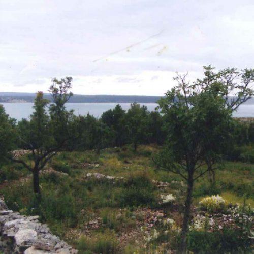 Građevinsko zemljište: 1000 m2 Maslenica