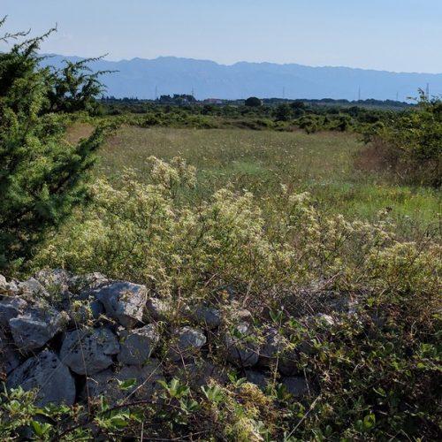 Poljoprivredno zemljište: 2012 m2 Zaton, Pravilnog oblika, 15 E/m2